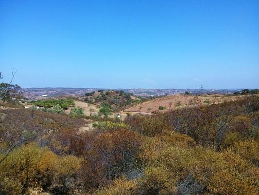 der Blick von unserem Grundstück über die sanften Hügel des nördlichen Hinterlandes