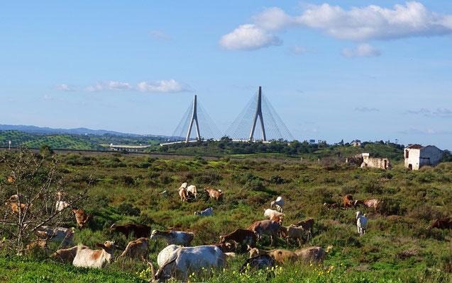 Kurztrip nach Spanien! Im Hintergrund der Grenzfluss Rio Guadiana und die Autobahnbrücke, welche die beiden Länder verbindet