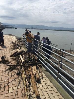 流木等の回収や漂流物の通報や注意喚起