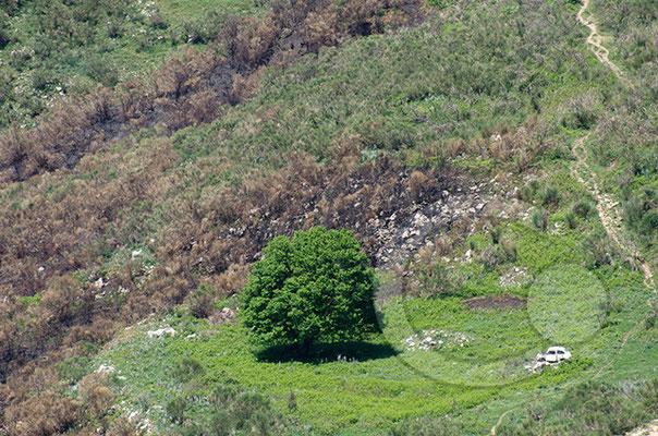 "Bergmassiv zwischen Alcara li Fusi und Longi im ""Parco dei Nebrodi"""