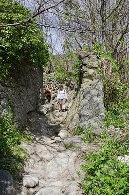 130423_RAW2265 Wanderweg vom Epomeo nach Forio