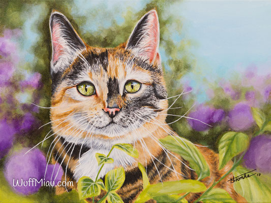 """Flecky"" Katze Acrylgemälde 40x30, Hundemalerei und Katzenmalerei ""WuffMiau"" Künstlerin Hanna Stemke 2017"