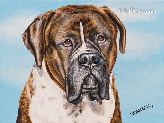 """Romeo"" American Bulldog Bullmastiff Bordauxdogge Mischling,  Acrylgemälde 40x30, Hundemalerei und Katzenmalerei ""WuffMiau"" Künstlerin Hanna Stemke 2018"
