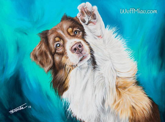 """""""Kaylee"""" Australian Shepherd Acrylgemälde 80x60,  """"WuffMiau"""" Hundemalerei, Künstlerin Hanna Stemke"""
