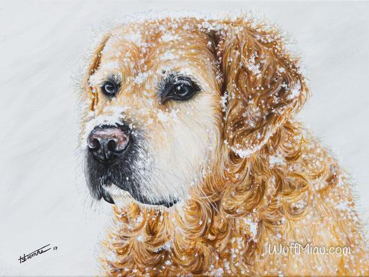"""Axl"" Labrador Golden Retriever Mischling Acrylgemälde 40x30, Hundemalerei und Katzenmalerei ""WuffMiau"" Künstlerin Hanna Stemke"