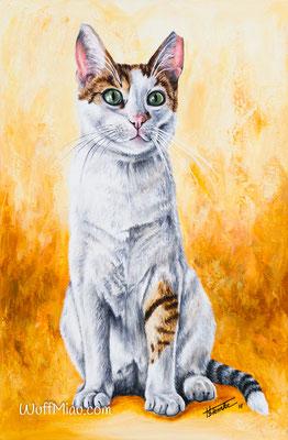 """""""Mischu"""" Acrylgemälde 60x40, Hundemalerei und Katzenmalerei """"WuffMiau"""" Künstlerin Hanna Stemke"""