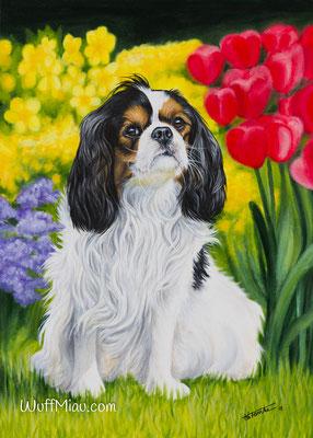 """""""Mia"""" Cavalier King Charles Spaniel 70x50, Hundemalerei und Katzenmalerei """"WuffMiau"""" Künstlerin Hanna Stemke 2018"""