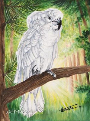 """Hugo"" Kakadu Acrylgemälde 40x30, Tiermalerei von Künstlerin Hanna Stemke"