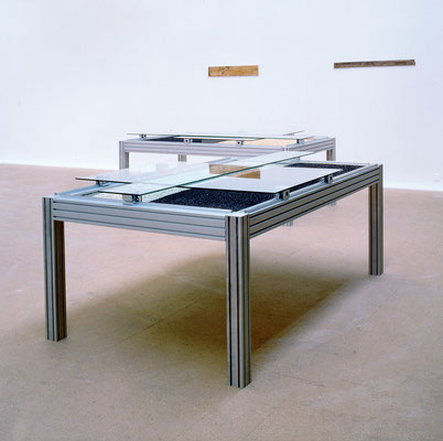 Portait Of A Landscape | 1994 | Aluminum rack | glas | thistle and sunflower seeds 31,49 x 78.74 x  37.40 in. | 80 x 200 x 95 cm