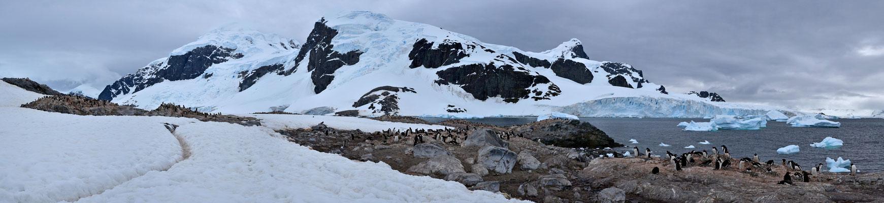 """links im Bild die """"Pinguinautobahnen"""""""