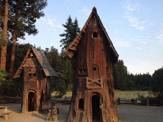 Maison taillée dans un tronc