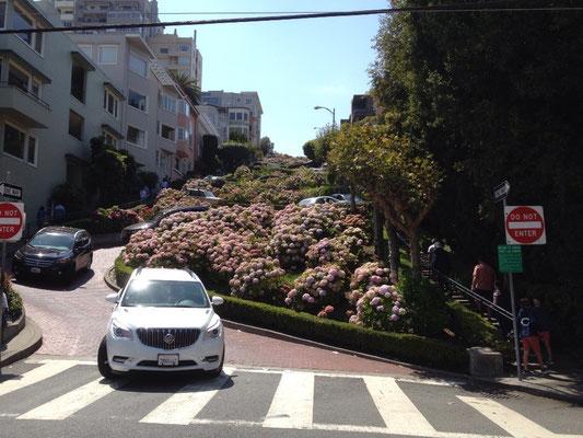 San Francisco: Lombard Street
