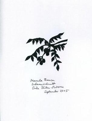 Marula Baum