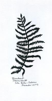 Adlerfarn
