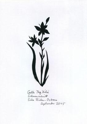 Gelbe Taglilie