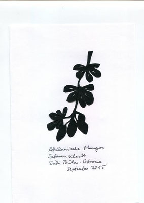 Afrikanische Mangos
