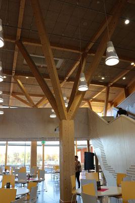 Besichtigung einer aus Holzstämmen gebauten Schule