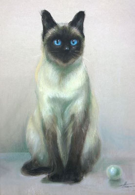 Chat 40x50