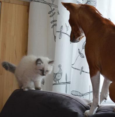 Imani mit ihrem neuen Freund Milow