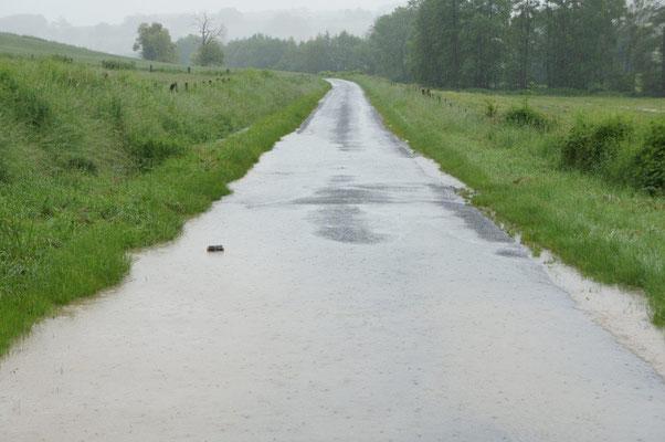 Un second point d'inondation est apparu cette fois-ci sur la RD 203.