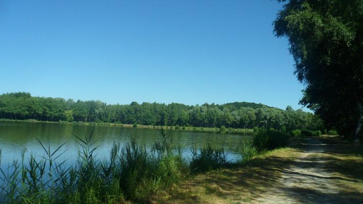 Fère-en-Tardenois. Parc des Bruyères : l'étang.