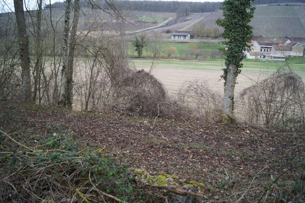 Une vue sympa sur les coteaux champenois.