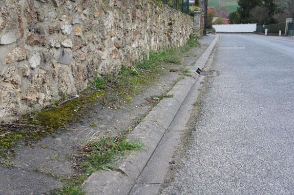A La Chapelle Monthodon, les habitants sont déjà habitués à voir de l'herbe dans les rues...