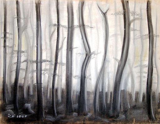 Der Frauenwald, 2000, 59 x 42 cm, Kohle, Kreide auf Karton
