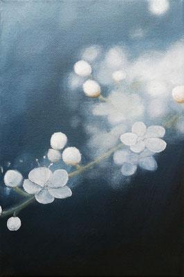 Kirschblüte in blau, 2019, 20 x30 cm, Öl auf Leinwand