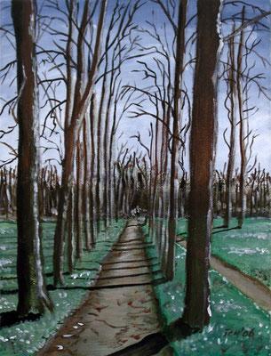 Lichtspiel, 2005, 30 x 40 cm, Öl auf Leinwand