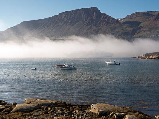 Qeqertarsuaq - MS Astor im Nebel
