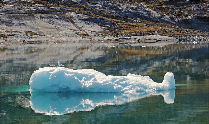 Eqi - Gletscher Eisberg
