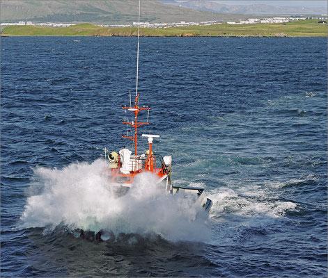Island Reykjavik - Lotsenboot