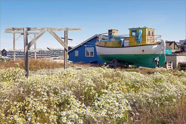 Ilulissat - Boot mit Häuser