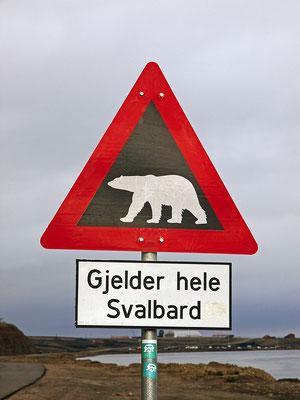 Spitzbergen Longyearbyen (2013)