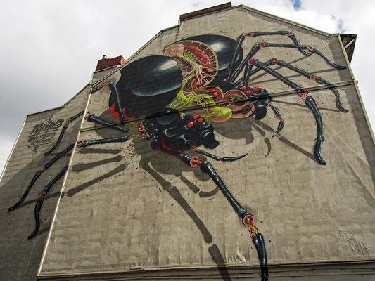 Gängeviertel - Graffiti Spinne