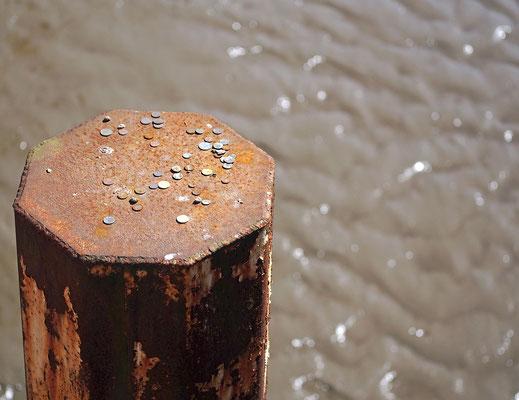 Duckdalben mit Münzen