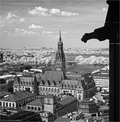 Hamburg - Rathaus und Alster