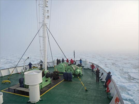 Packeis nördlich von Spitzbergen