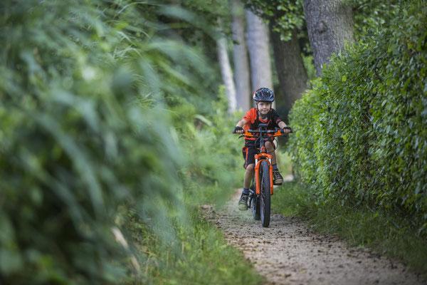 KTM e-Bikes 2018 4