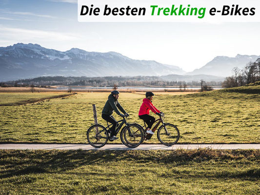Die besten Trekking e-Bikes des Jahres 2021