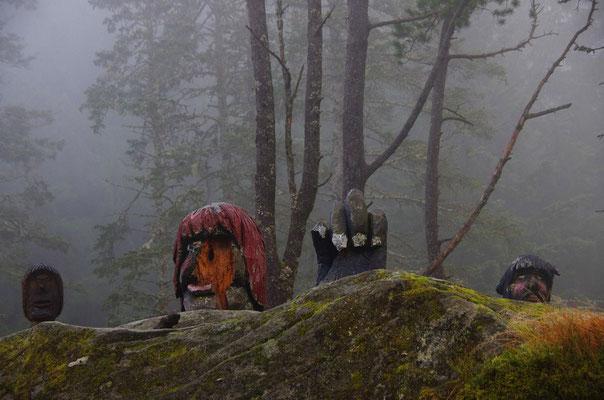 im Trollwald