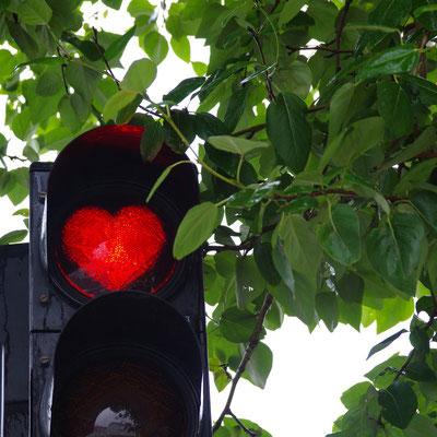 die roten Herzampeln in Akureyri