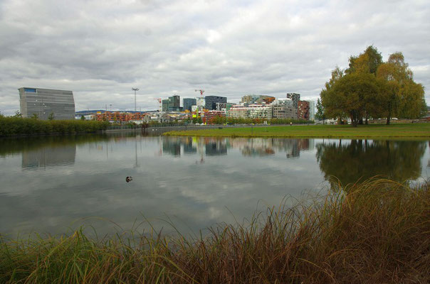Mittelalterpark