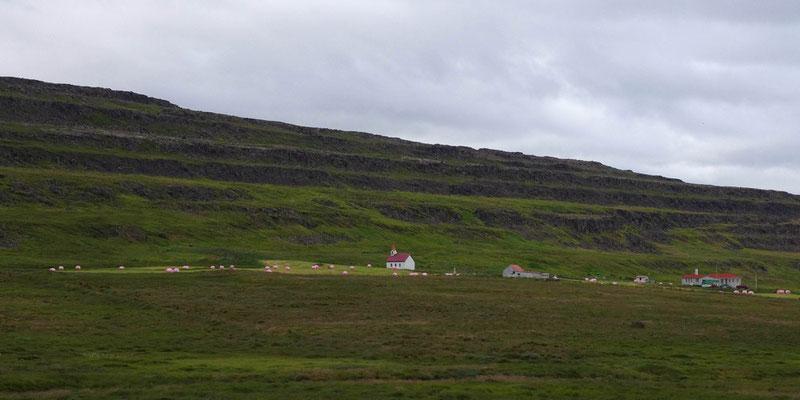 ein einsamer Bauernhof mit rosa Traktoregg