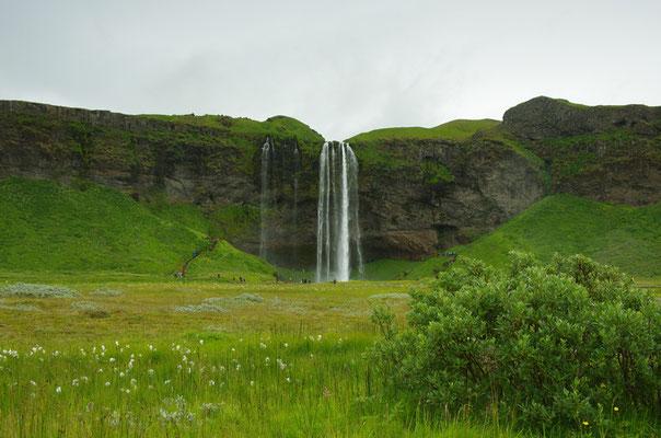 der Seljalandsfoss mit Touristenkamouflagebusch :-)