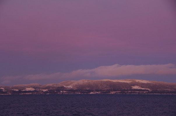 am Morgen im Trondheimfjord