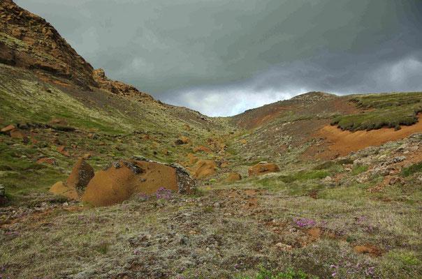 auf unserer ersten Wanderung, noch gibt es Farbe in der Landschaft...