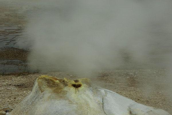 und wieder beobachten uns ein Dampf speiendes ...