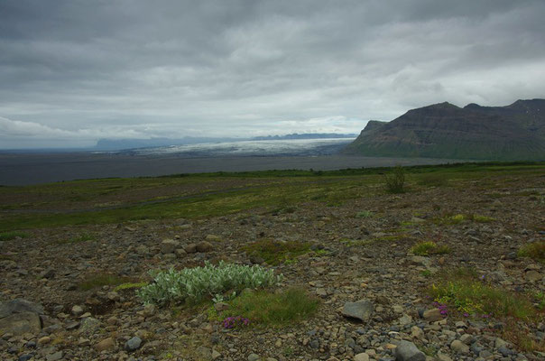 Blick auf den Vatnajökull